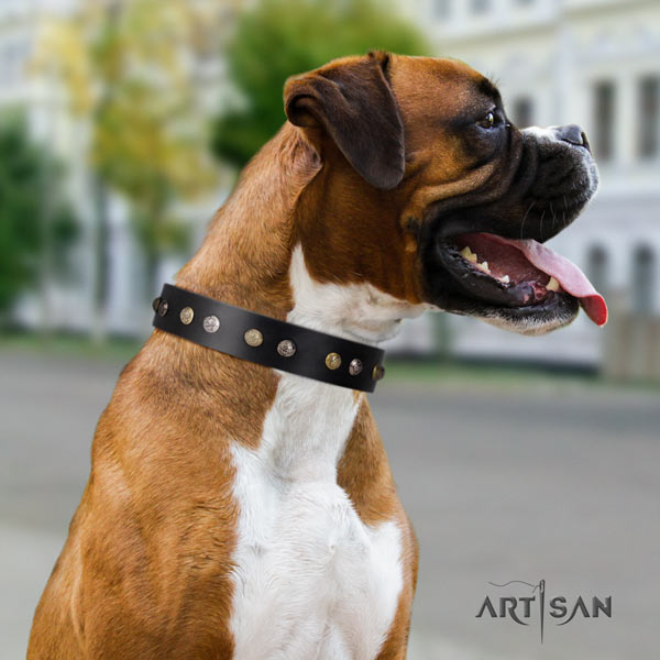 Boxer extraordinary full grain natural leather collar with rust-proof d-ring