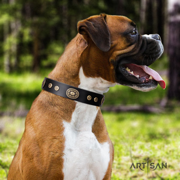 Boxer awesome full grain genuine leather collar with rust resistant traditional buckle