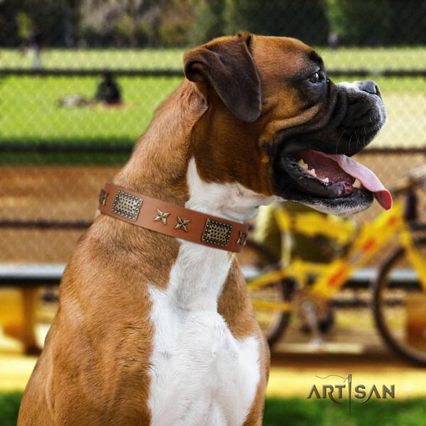 Boxer perfect fit genuine leather collar with corrosion resistant d-ring