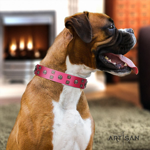 Boxer full grain natural leather collar with strong buckle for walking