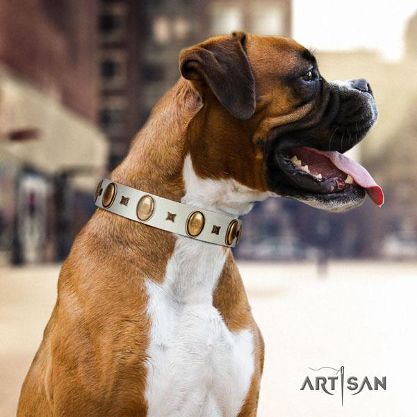 Boxer inimitable full grain genuine leather dog collar for daily walking