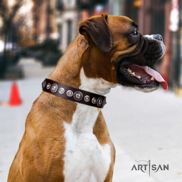 Boxer handcrafted genuine leather collar with corrosion proof fittings