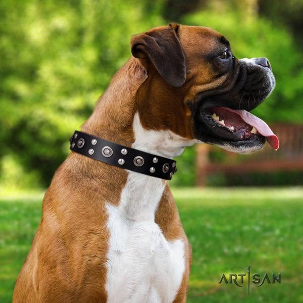 Boxer stylish design full grain leather collar with rust resistant d-ring