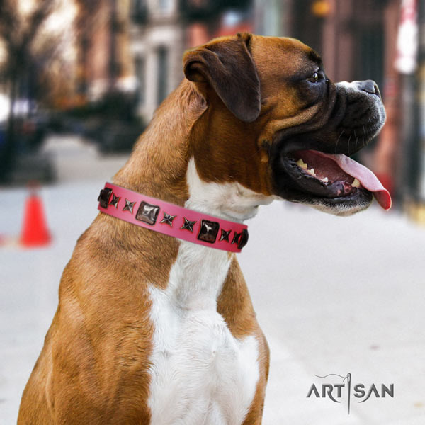 Boxer embellished natural leather collar with corrosion resistant fittings