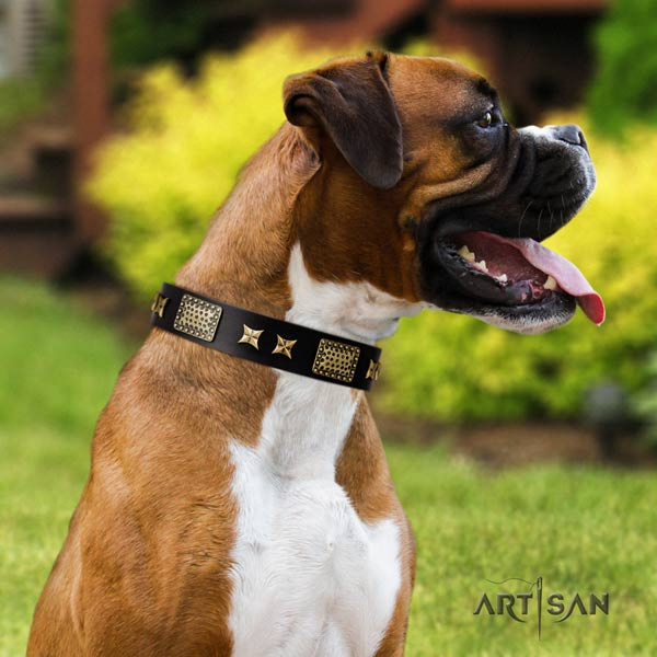 Boxer stylish design genuine leather collar with rust resistant hardware