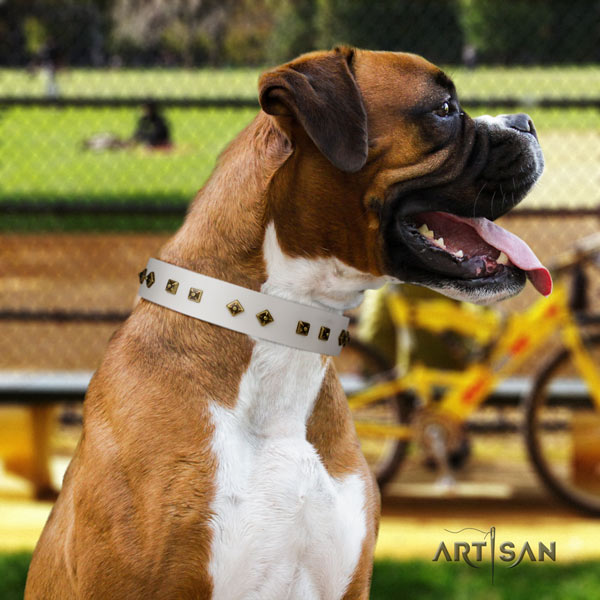Boxer significant natural leather collar with rust resistant d-ring
