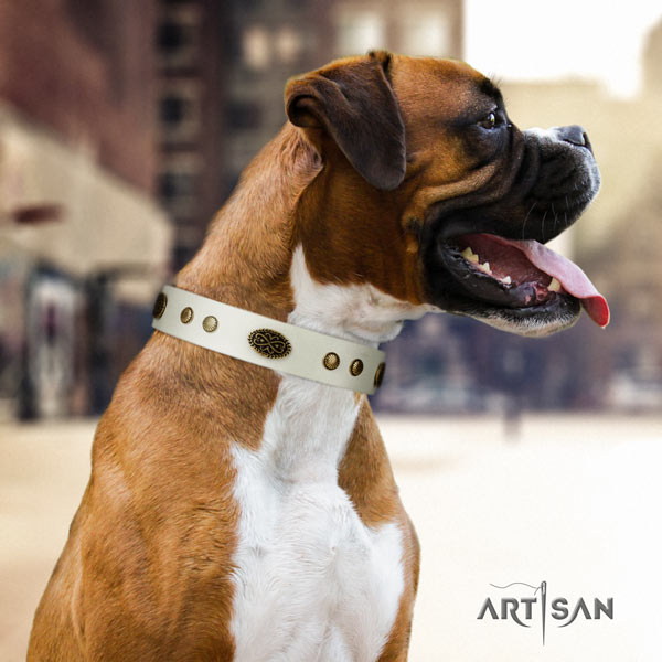 Boxer convenient full grain genuine leather collar with corrosion resistant traditional buckle