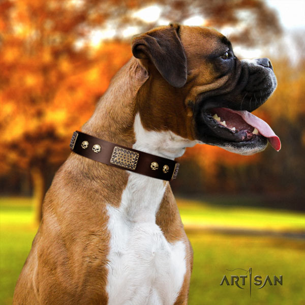 Boxer awesome full grain leather collar with corrosion proof d-ring