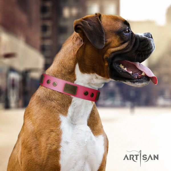 Boxer adorned natural leather collar with corrosion proof hardware