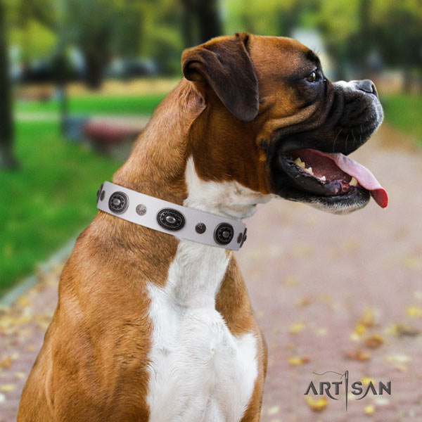 Boxer fine quality natural leather collar with corrosion proof traditional buckle