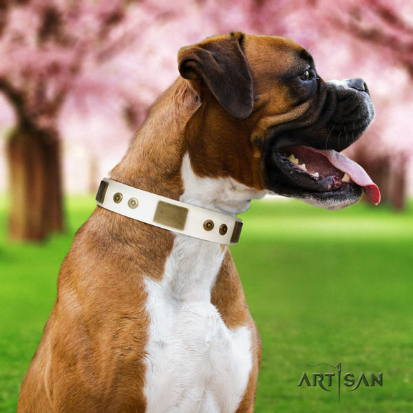 Boxer designer genuine leather collar with rust resistant d-ring