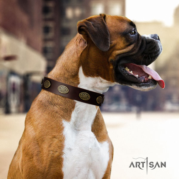 Boxer incredible full grain leather collar with rust-proof d-ring