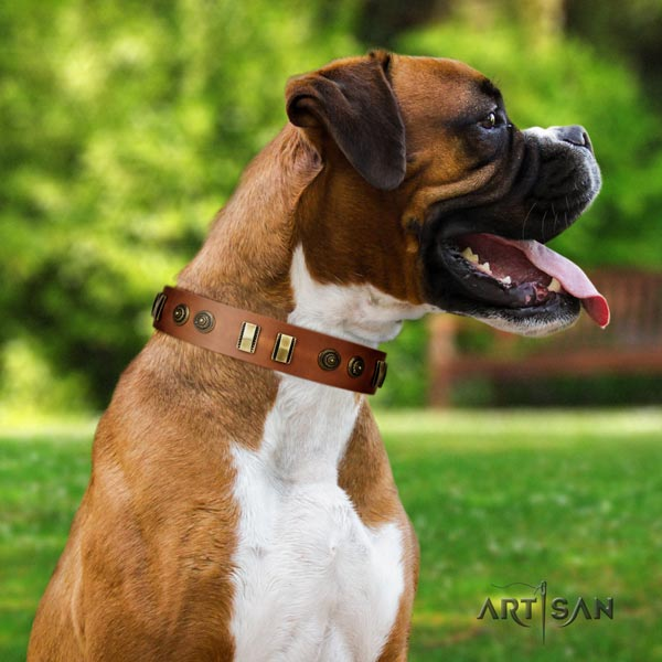 Boxer handcrafted leather collar with rust resistant fittings