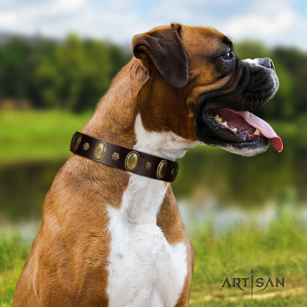 Boxer convenient genuine leather dog collar for everyday walking