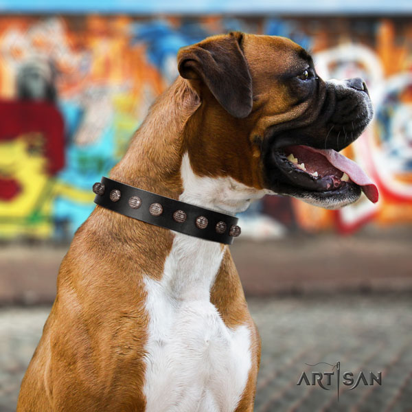 Boxer natural genuine leather collar with reliable fittings for handy use
