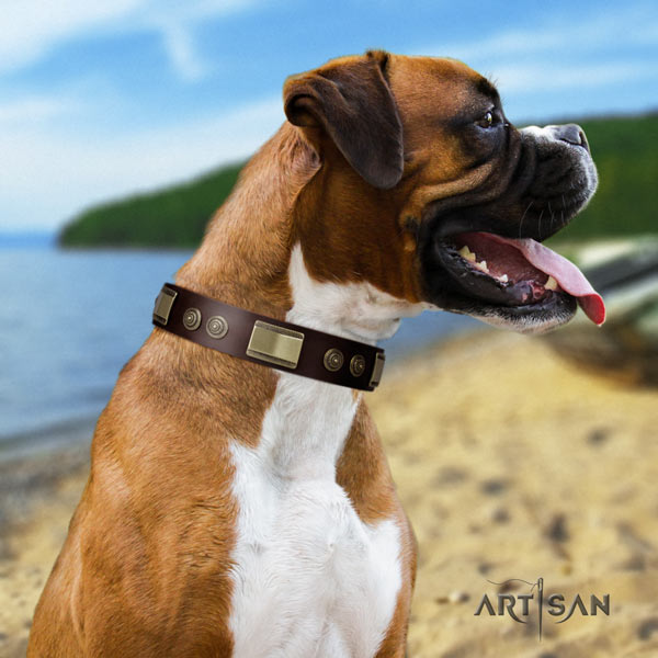 Boxer adorned natural leather collar with rust resistant hardware