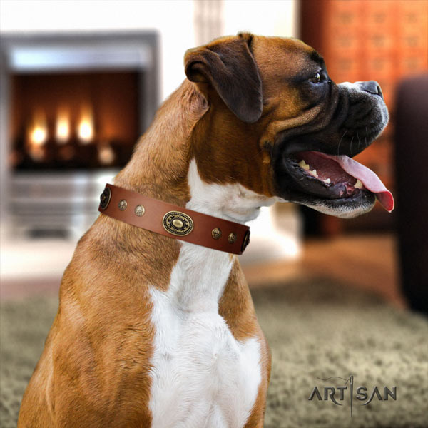 Boxer stylish natural leather collar with rust-proof traditional buckle