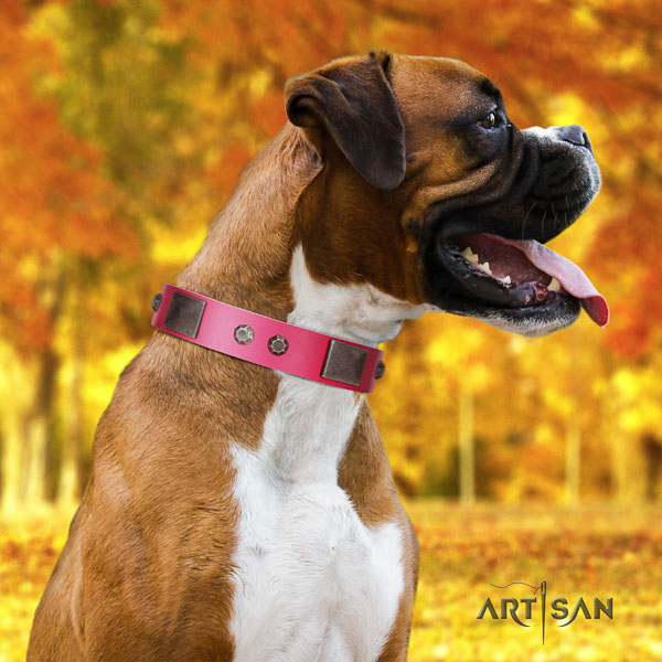 Boxer decorated genuine leather dog collar for basic training