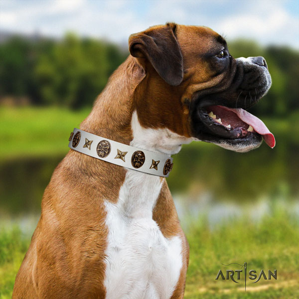 Boxer convenient natural genuine leather dog collar for everyday use