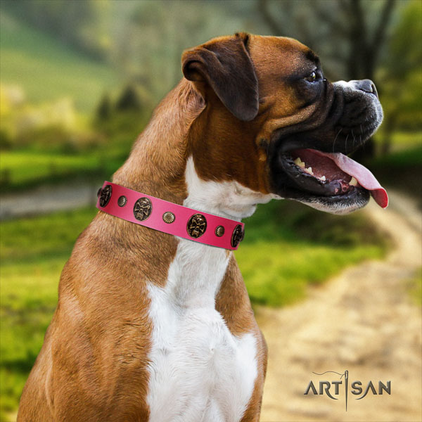 Boxer stylish natural genuine leather dog collar for everyday walking