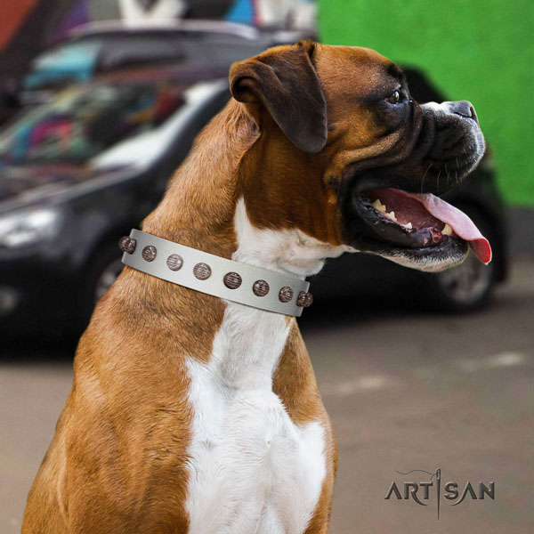 Boxer natural genuine leather collar with corrosion resistant fittings for daily use