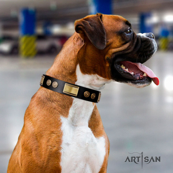 Boxer unusual full grain genuine leather collar with corrosion proof fittings