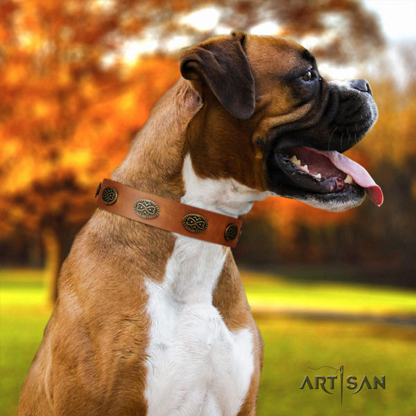 Boxer trendy full grain natural leather collar with rust resistant d-ring