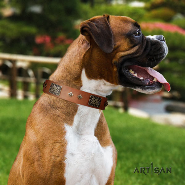 Boxer unusual full grain natural leather collar with corrosion proof traditional buckle