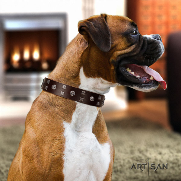 Boxer natural genuine leather collar with durable D-ring for everyday walking