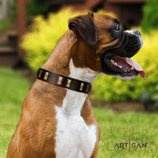 Boxer stylish design full grain genuine leather dog collar for daily walking