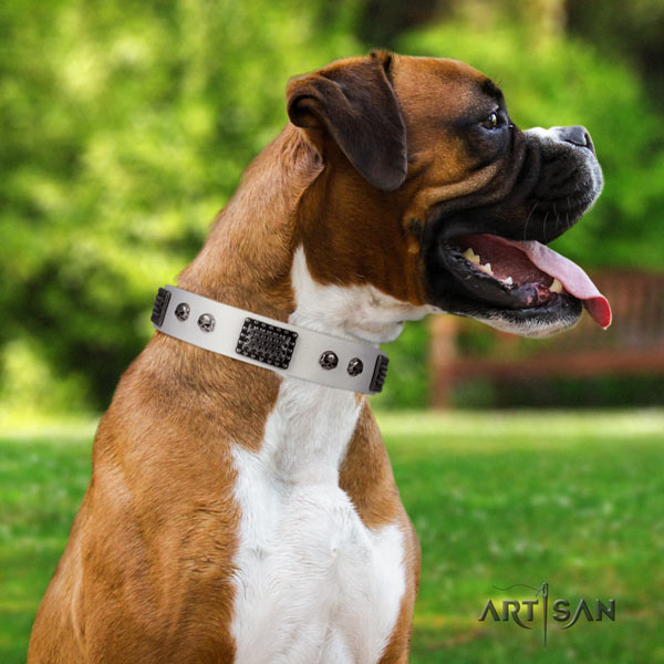 Boxer best quality full grain leather collar with rust-proof d-ring