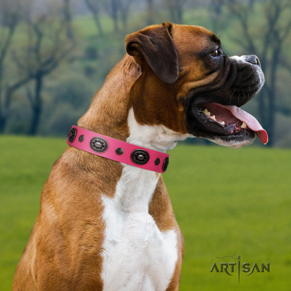 Boxer inimitable full grain natural leather collar with corrosion proof hardware