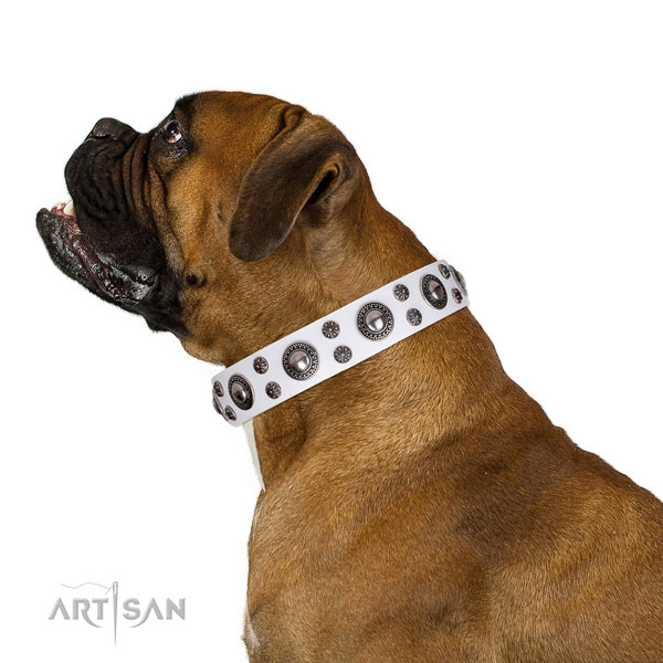 Boxer decorated leather dog collar for daily use