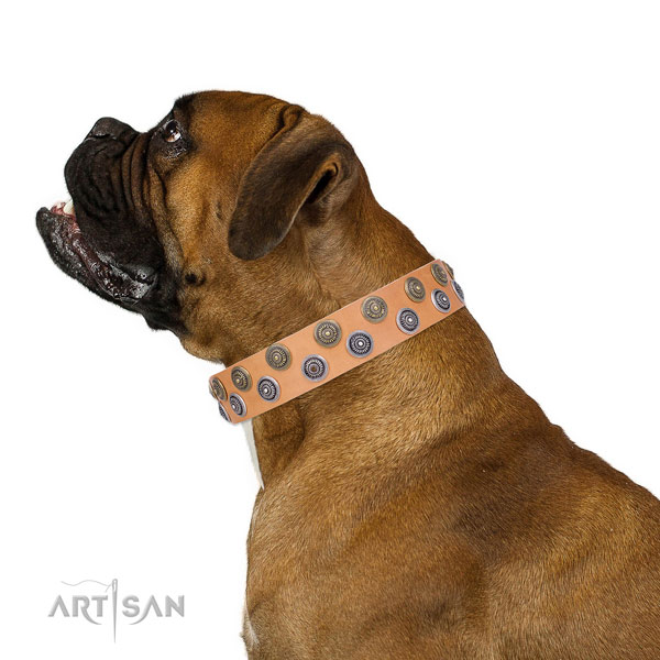 Boxer easy to adjust full grain leather dog collar for everyday use