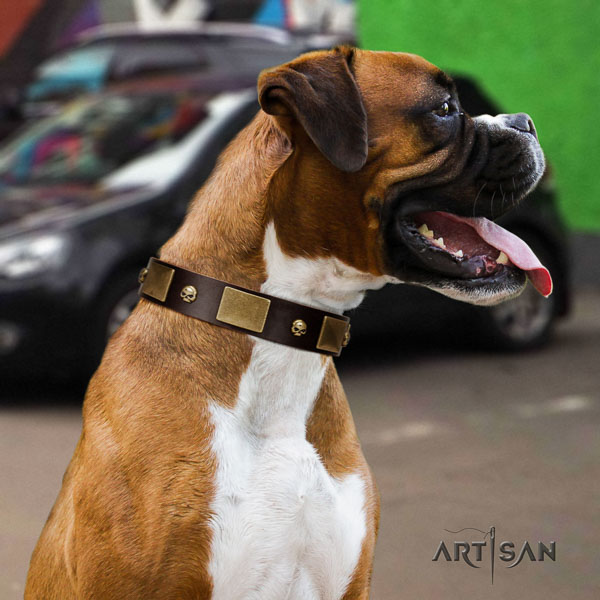 Boxer easy to adjust full grain genuine leather dog collar for daily use