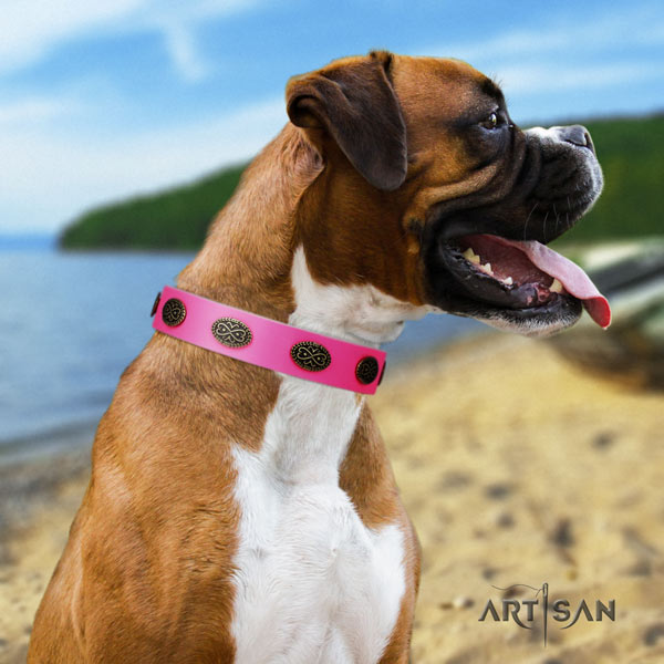 Boxer easy wearing full grain genuine leather collar with corrosion resistant buckle