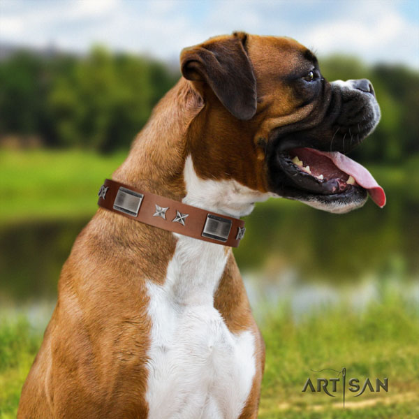 Boxer full grain leather collar with reliable hardware