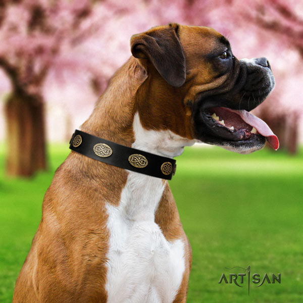 Boxer convenient full grain leather collar with corrosion proof d-ring