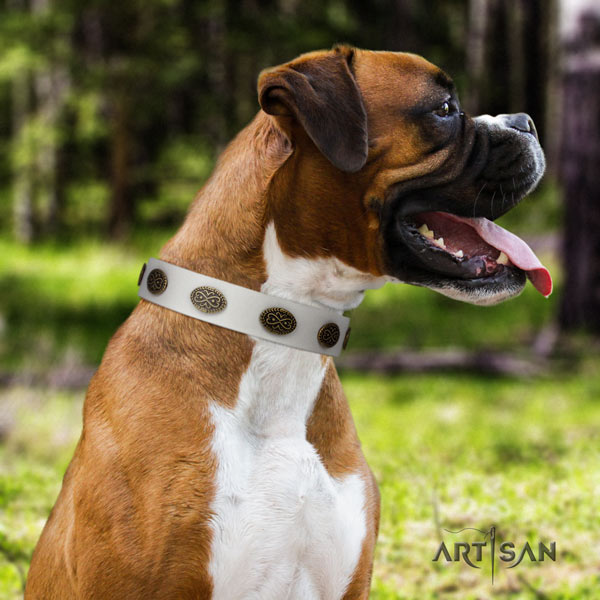 Boxer trendy full grain natural leather collar with rust-proof buckle