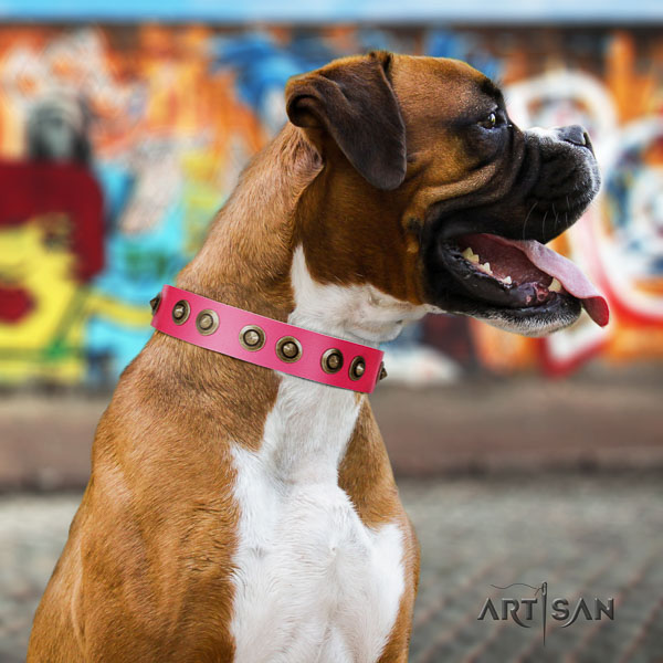 Boxer handcrafted natural genuine leather dog collar for daily use