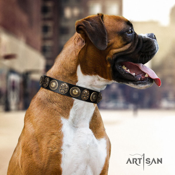 Boxer fashionable leather dog collar for daily use