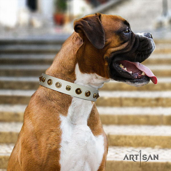 Boxer fashionable full grain natural leather dog collar for basic training