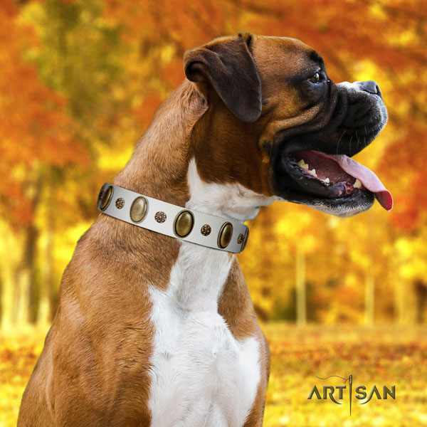 Boxer exceptional natural genuine leather dog collar for comfy wearing