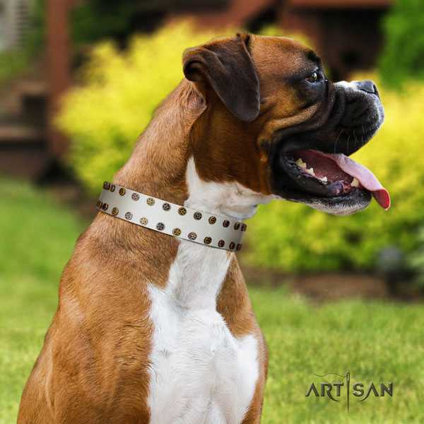 Boxer adorned full grain leather dog collar for everyday use