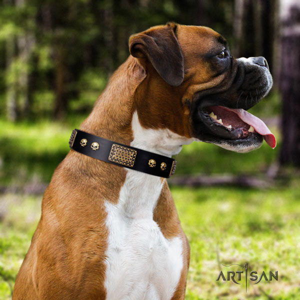 Boxer trendy full grain natural leather collar with corrosion proof hardware