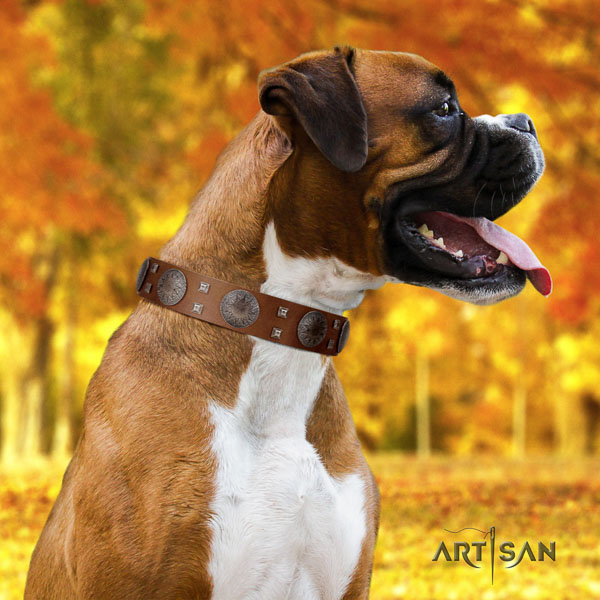 Boxer adjustable natural genuine leather dog collar for daily walking