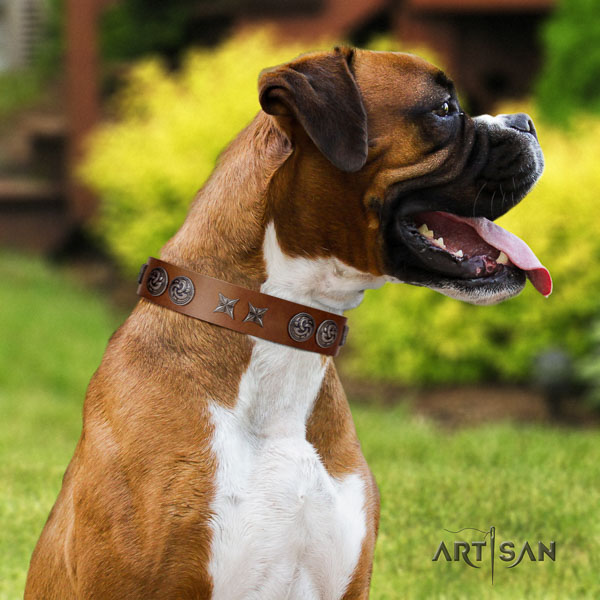 Boxer full grain genuine leather collar with rust-proof fittings for comfortable wearing