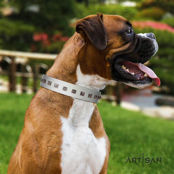 Boxer natural genuine leather collar with rust resistant buckle for stylish walking