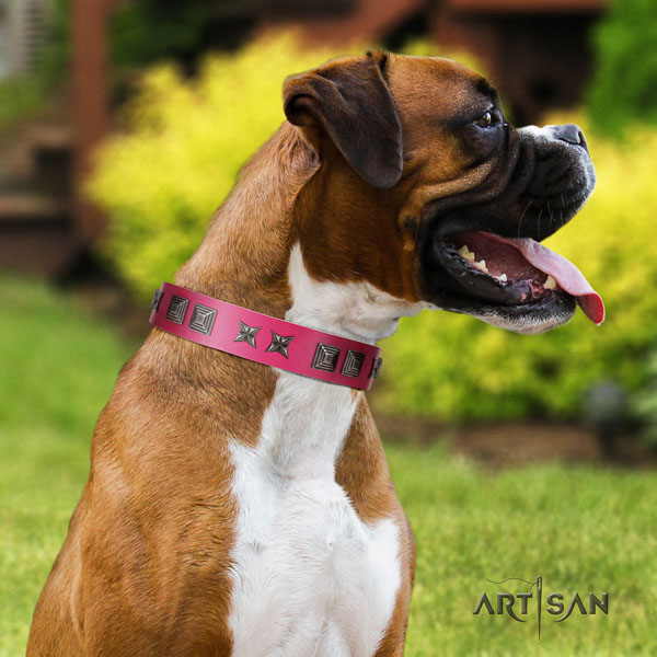 Boxer full grain leather collar with reliable fittings for comfy wearing
