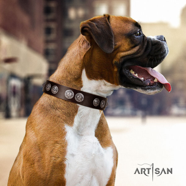 Boxer significant full grain genuine leather dog collar for everyday walking